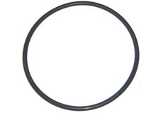 Eagle Pump Lid O-Ring 39204100 O-161