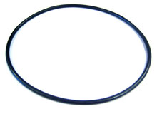 Pinnacle Pentair Pump Seal Plate O-Ring 355619