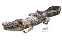 PoolMaster Float Crocodile Body 54575